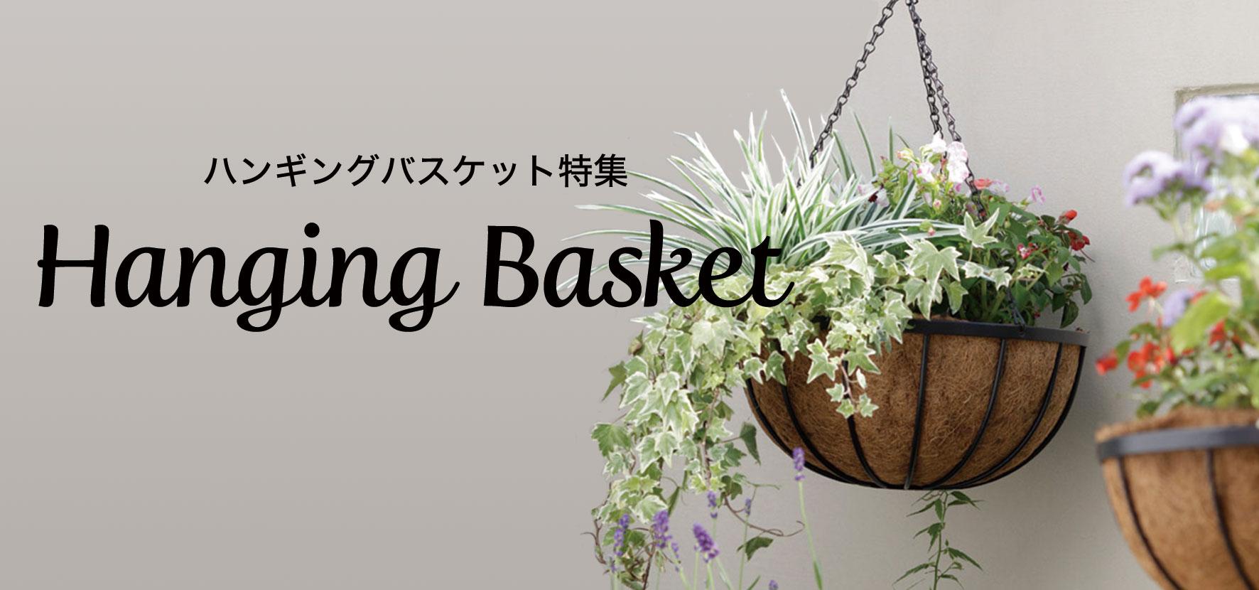 ハンギングバスケット特集