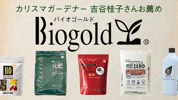 Biogold バイオゴールド