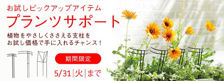 お試しピックアップアイテム プランツサポート 植物をやさしくささえる支柱をお試し価格で手に入れるチャンス!期間限定 5/31 火 まで