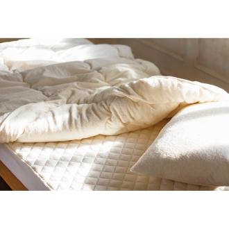 ディノス オンラインショップふわふわ今治タオルの寝具シリーズ 掛け布団 お得なシングル2枚組アイボリー