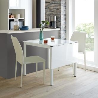 ディノス オンラインショップ隠しキャスター付きバタフライ伸長テーブル お得な3点セット(伸長テーブル+モダンスタッキングチェア2脚)ホワイト