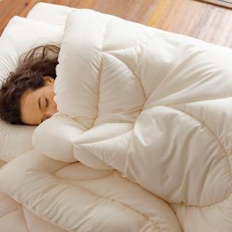 ディノス オンラインショップあったか洗える清潔寝具 お得な2枚合わせ掛布団+敷きパッド+枕(ベッドセット) シングル3点セット
