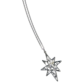 HEIRLOOM / Heirloom SV star motif Long pendant