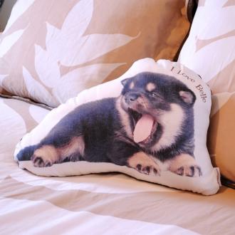 宠物照片坐垫L尺寸