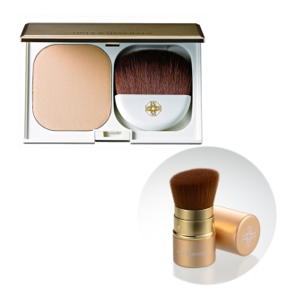 Only mineral mineral moist foundation (10g) + a great deal of brush