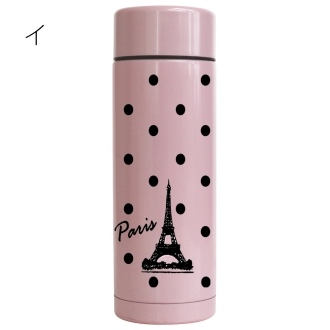 The Eiffel Tower  Slim Stainless bottle  Picture 1.