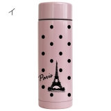 The Eiffel Tower  Slim Stainless bottle.