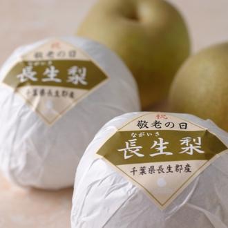 【敬老の日ギフト】千葉県産 長生(ながいき)梨